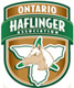 Ontario Haflinger Association